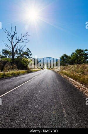 A view down an empty road outside Brisbane with a midday sun. - Stock Photo