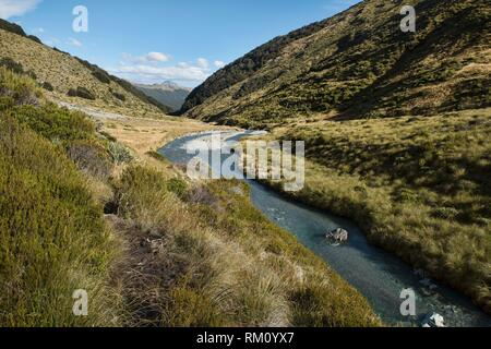 Fabulous scenery on the Earnslaw Burn Track, location for the Hobbit movies Glenorchy, New Zealand. - Stock Photo