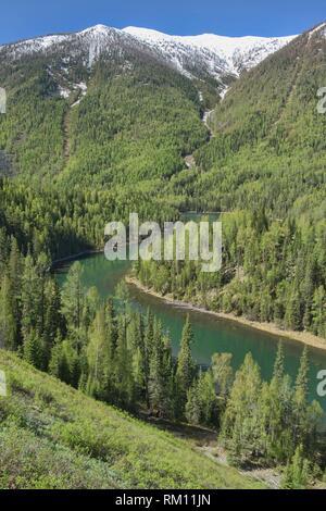 The lovely Kanas River at Kanas Lake National Park, Xinjiang, China. - Stock Photo