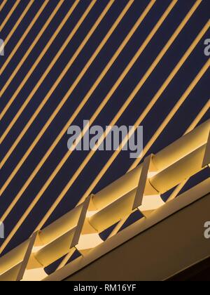 Detail of the Assut Bridge in the City of Arts and Sciences, Valencia, Spain - Stock Photo