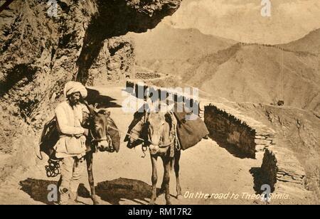 'On the road to Theog, Simla', c1918-c1939. From an album of postcards. - Stock Photo