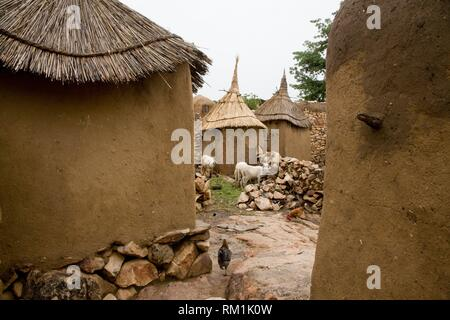 Mali, Dogon Country. Adobe barns in the village of Daga. Hens and goats looking for food on the streets. - Stock Photo