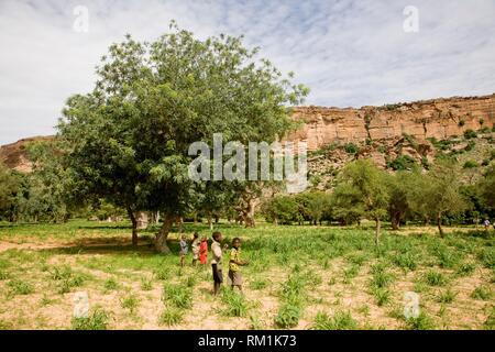 Dogon Country. Mali. Teli Village. - Stock Photo