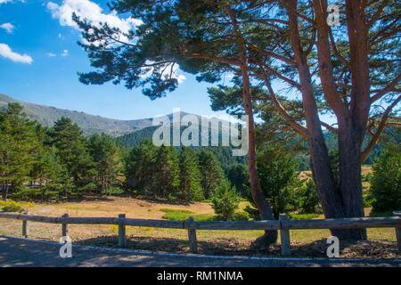 Landscape. Los Cotos mountain pass, Sierra de Guadarrama National Park, Madrid province, Spain. - Stock Photo