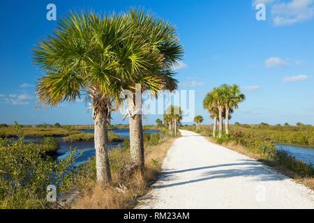 Black Point Wildlife Drive, Merritt Island National Wildlife Refuge, Florida. - Stock Photo