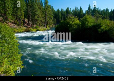 Deschutes Wild and Scenic River from Deschutes River Trail, Deschutes National Forest, Oregon. - Stock Photo