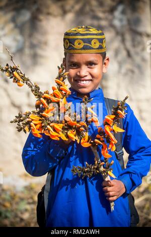 Bangladeshi school boy enjoying with spring flower of palash. Butea monosperma is a species of Butea native to tropical and sub-tropical parts of the - Stock Photo