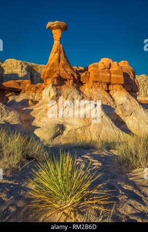 Desert bush anchors the scene of the iconic toadstool hoodoo in Paria Rimrocks Toadstool Hoodoos, Grand Staircase-Escalante National Monument, Utah, - Stock Photo