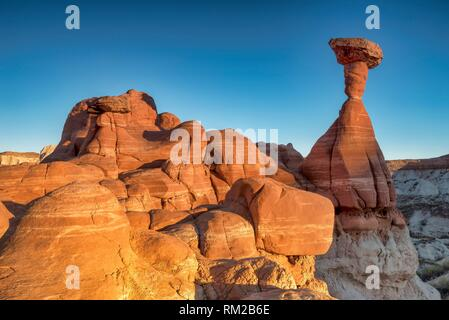 Iconic sandstone toadstool hoodoo catches the setting sun in Paria RImrocks Toadstool Hoodoos, Utah, USA. - Stock Photo