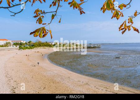 The South Beach of Anse de la Coue at Low tide at Fouras, Charente-Maritime Department, Nouvelle-Aquitaine Region, France, Europe. - Stock Photo