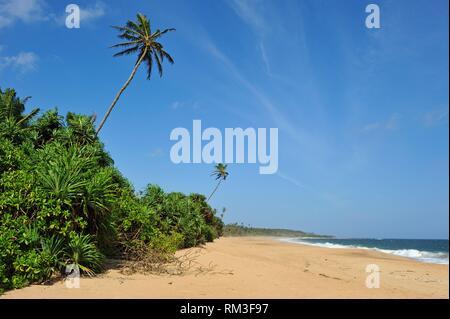Tangalle beach, Sri Lanka, Indian subcontinent, South Asia. - Stock Photo