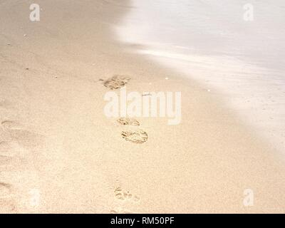 Footprints of bare feet on wet sand. Summer vacation on the beach. - Stock Photo