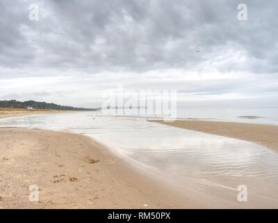 Human and dogs footprints on the beach in the sand - Stock Photo