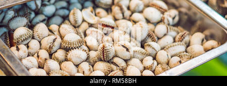 Fresh tasty seafood served on crushed ice, close-up BANNER, long format - Stock Photo