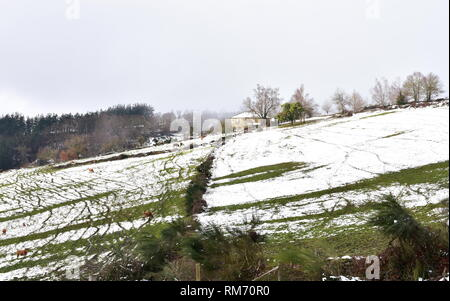 Winter landscape with house on a snowy slope, cows, trees and fog. Lugo, Galicia, Spain. - Stock Photo