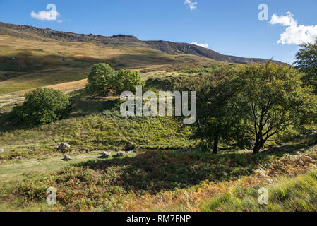 September in the hills around Dove Stone reservoir, Greenfield, Greater Manchester, England. View of Chew hills. - Stock Photo
