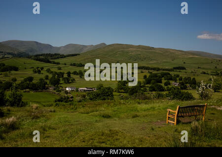 Wooden bench with a view of the forest and the farm. - Stock Photo