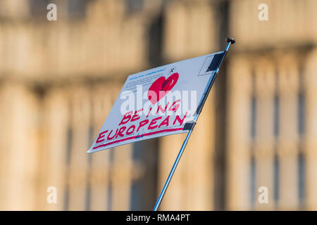 London, UK. 14th February, 2019. Leave means leave and SODEM, pro EU, protestors continue to make their points, side by side, outside Parliament as the next vote on Theresa May's plan is due this evening. Credit: Guy Bell/Alamy Live News - Stock Photo