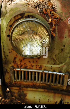 Detail of the headlight on a rusting classic car abandoned in a scrap yard. - Stock Photo