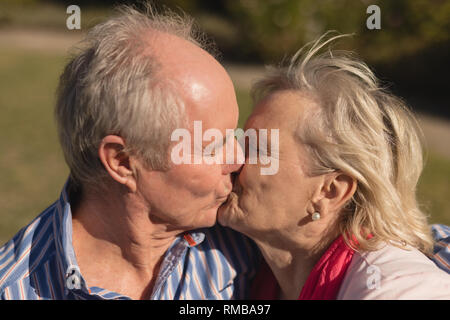 Senior couple kissing each other in the park - Stock Photo