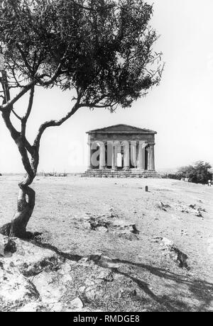 The Temple of Concordia in Agrigento, built in the 5th century BC, is the best preserved and perhaps most beautiful of all the Doric temples. The temples and ruins of ancient Akragas, formerly a Greek colony, are now part of the World Cultural Heritage. - Stock Photo