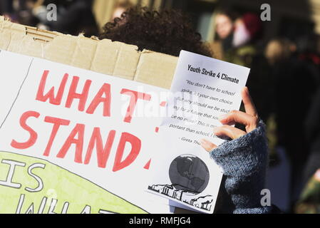 Liverpool, UK, Friday 15th February 2019, Student strike organised by a student grassroots movement, UK Student Climate Network and Schools 4 Climate Action with flags and placards on St George's Plateau, Liverpool city centre. Credit David J Colbran / Alamy Live News - Stock Photo