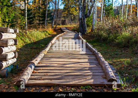 Beautiful long wooden path trail for nature trekking with forest around in the Araisi Archaeological Museum Park, Latvia.