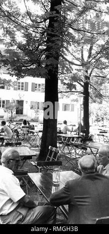 Guests are drinking beer in the beer garden Aumeister in the Englischer Garten in Munich. - Stock Photo