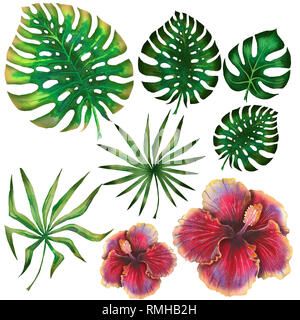 Watercolor summer tropical set for design banner or flyer with exotic palm leaves, hibiscus flowers - Stock Photo
