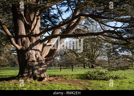 Oxford University Parks in Winter - Stock Photo