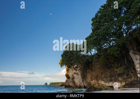 Dusk, Cathedral Cove, New Zealand. Beautiful view with rocky promontory lit by the last rays of the sun and a rising moon in the deep blue sky backgro - Stock Photo