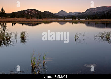 WY03748-00...WYOMING - Sunrise from a small pond along the shore of Island Lake in the Beartooth Mountans area of Shoshone National Forest. - Stock Photo