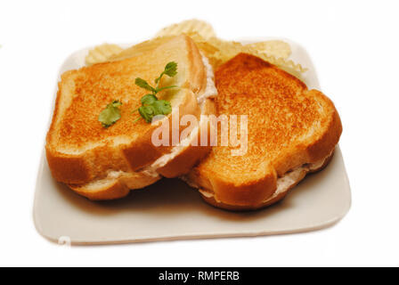 Tuna Melt Sandwich - Stock Photo