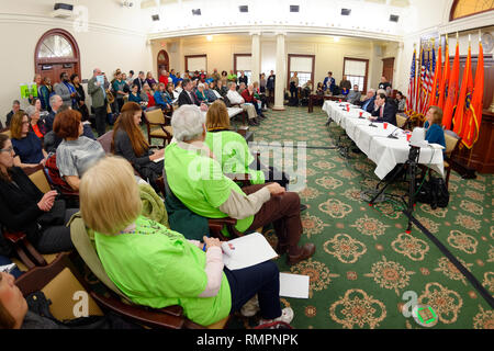 Mineola, New York, USA. 15th Feb, 2019. Invited speaker addresses (L-R, at table) NYS Senator JOHN BROOKS, Assemblyman STEVE ENGLEBRIGHT, NYS Sen. TODD KAMINSKY, and Assemblywoman JUDY GRIFFIN, during NYS Senate Public Hearing on Climate, Community & Protection Act, Bill S7253, sponsored by Sen. Kaminsky, Chair of Senate Standing Committee on Environmental Conservation. This 3rd public hearing on bill to fight climate change was on Long Island. Credit: Ann Parry/ZUMA Wire/Alamy Live News - Stock Photo