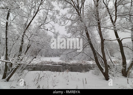 Winter landscape with crow near Yauza river in Babushkinskiy district, Moscow - Stock Photo