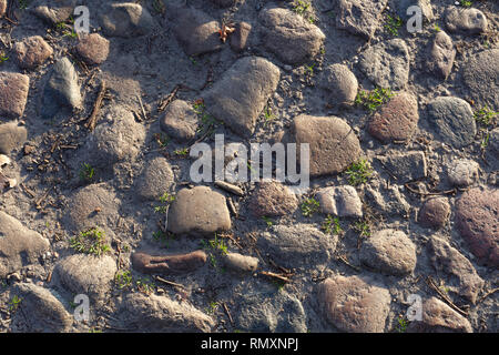 pavement with moss and fresh green grass between paving stones in beautiful city park. Big smooth pebble stones closeup - Image - Stock Photo