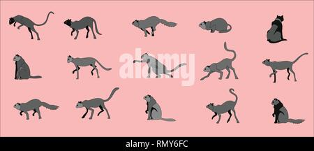 Cats collection, vector illustrations of domestic cats in various poses - Stock Photo