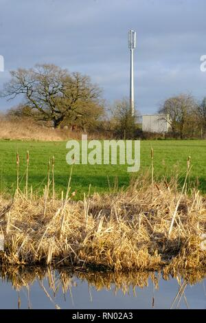 Mobile Phone Mast, Cellular Phone Mast in rural setting Cheshire UK - Stock Photo