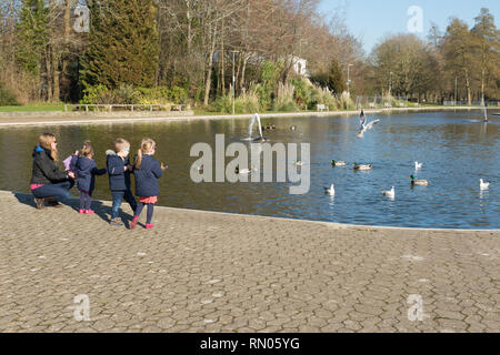 Family (mother with three young children) feeding the ducks and gulls in Eastrop Park, Basingstoke, UK, on a sunny February day - Stock Photo