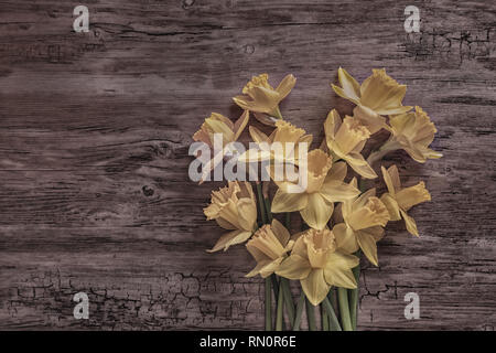 Flat lay of daffodils on a wooden surface, representing a heart - Stock Photo