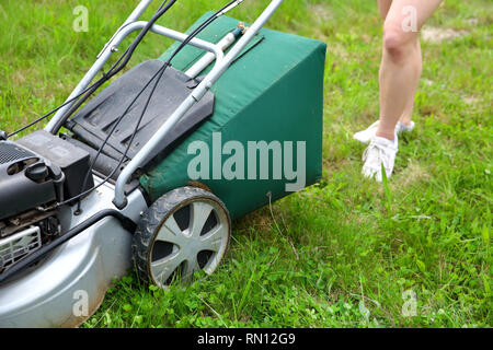 The teenager cuts the lawn with a petrol mower. - Stock Photo