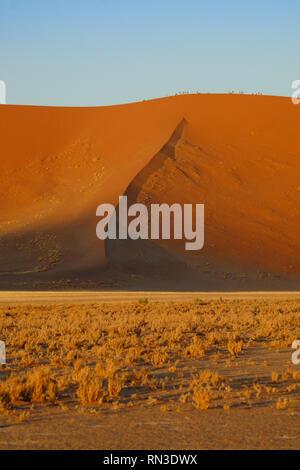 Sand dunes at sunrise around Dune 45, near Sossusvlei, Namibia - Stock Photo