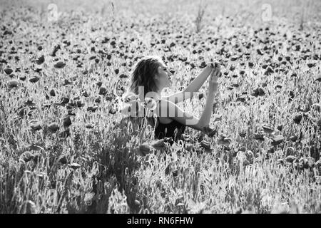 woman in field of poppy making selfie photo with phone - Stock Photo