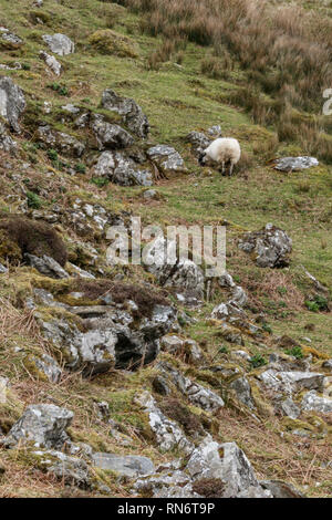 Donegal's beautiful upland wilderness landscape - Stock Photo