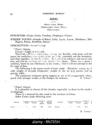 . Compilation of notes on the most important timber tree species of the Philippine Islands. Timber; Trees. GUIJO. Shorea Guiso. Blurue. Dipterocarpus Guiso, Blanco. Fam. Dipterocarpeae. Copied from nature by R. Garoft. Page 52. Please note that these images are extracted from scanned page images that may have been digitally enhanced for readability - coloration and appearance of these illustrations may not perfectly resemble the original work.. Ahern, George Patrick, 1859-1942. [Manila] - Stock Photo