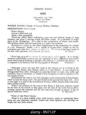 . Compilation of notes on the most important timber tree species of the Philippine Islands. Timber; Trees. from drawing copied from nstnre by B« Q*M&*. Page 16.. Please note that these images are extracted from scanned page images that may have been digitally enhanced for readability - coloration and appearance of these illustrations may not perfectly resemble the original work.. Ahern, George Patrick, 1859-1942. [Manila] - Stock Photo