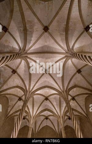 Palma City, Majorca island, Spain - Interior of Lonja de Palma de Mallorca (Llotja dels Mercaders) roof detail. XV century gothic style monumental old - Stock Photo