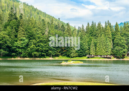 beautiful summer scenery of the synevyr lake. pier among the coniferous forest on the shore. popular travel destination of carpathian mountains. sunny - Stock Photo