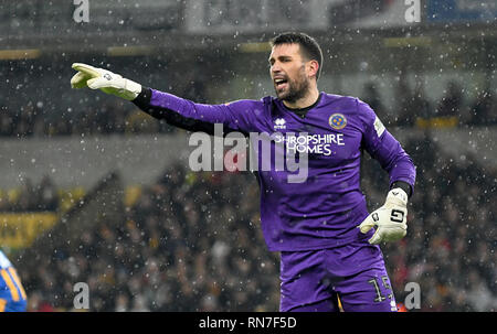 Footballer football goalkeeper Steve Arnold of Shrewsbury Town FC - Stock Photo