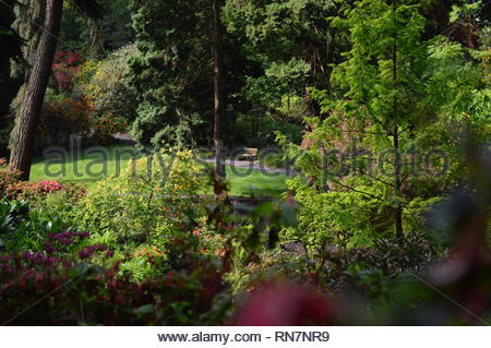 Relaxing on a bench in North Wales Botanic Garden - Stock Photo